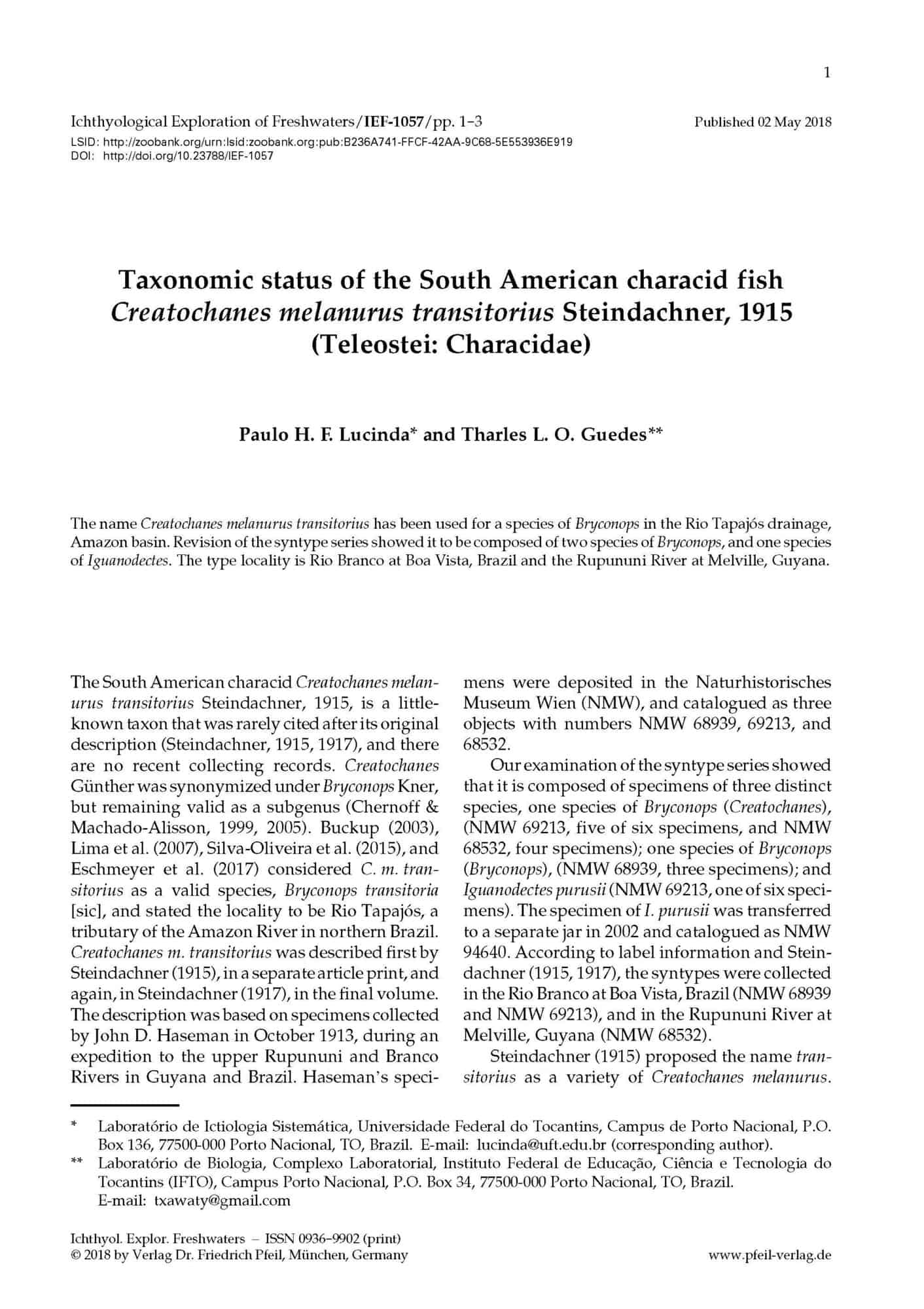 Taxonomic status of the South American characid fish Creatochanes melanurus transitorius Steindachner, 1915 (Teleostei: Characidae)