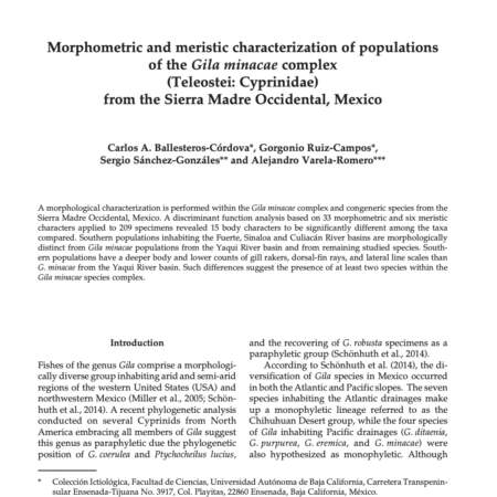 Morphometric and meristic characterization of populations of the Gila minacae complex (Teleostei: Cyprinidae) from the Sierra Madre Occidental, Mexico
