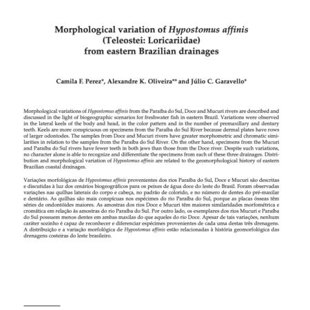 Morphological variation of Hypostomus affinis (Teleostei: Loricariidae) from eastern Brazilian drainages