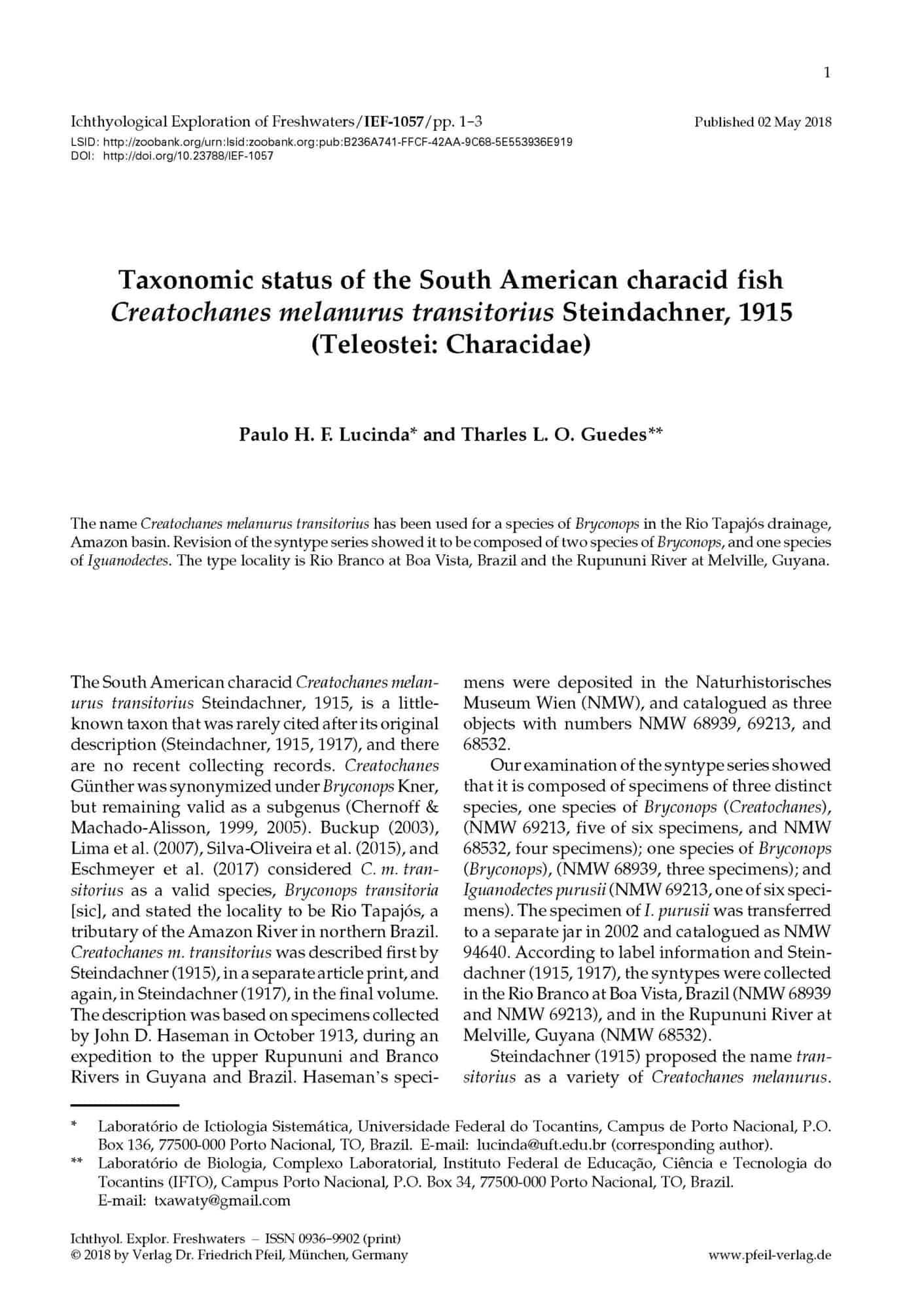 Taxonomic status of the South American characid fish Creatochanes melanurus transitorius Steindachner, 1915 (Teleostei: Characidae)