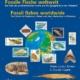 Fossile Fische weltweit