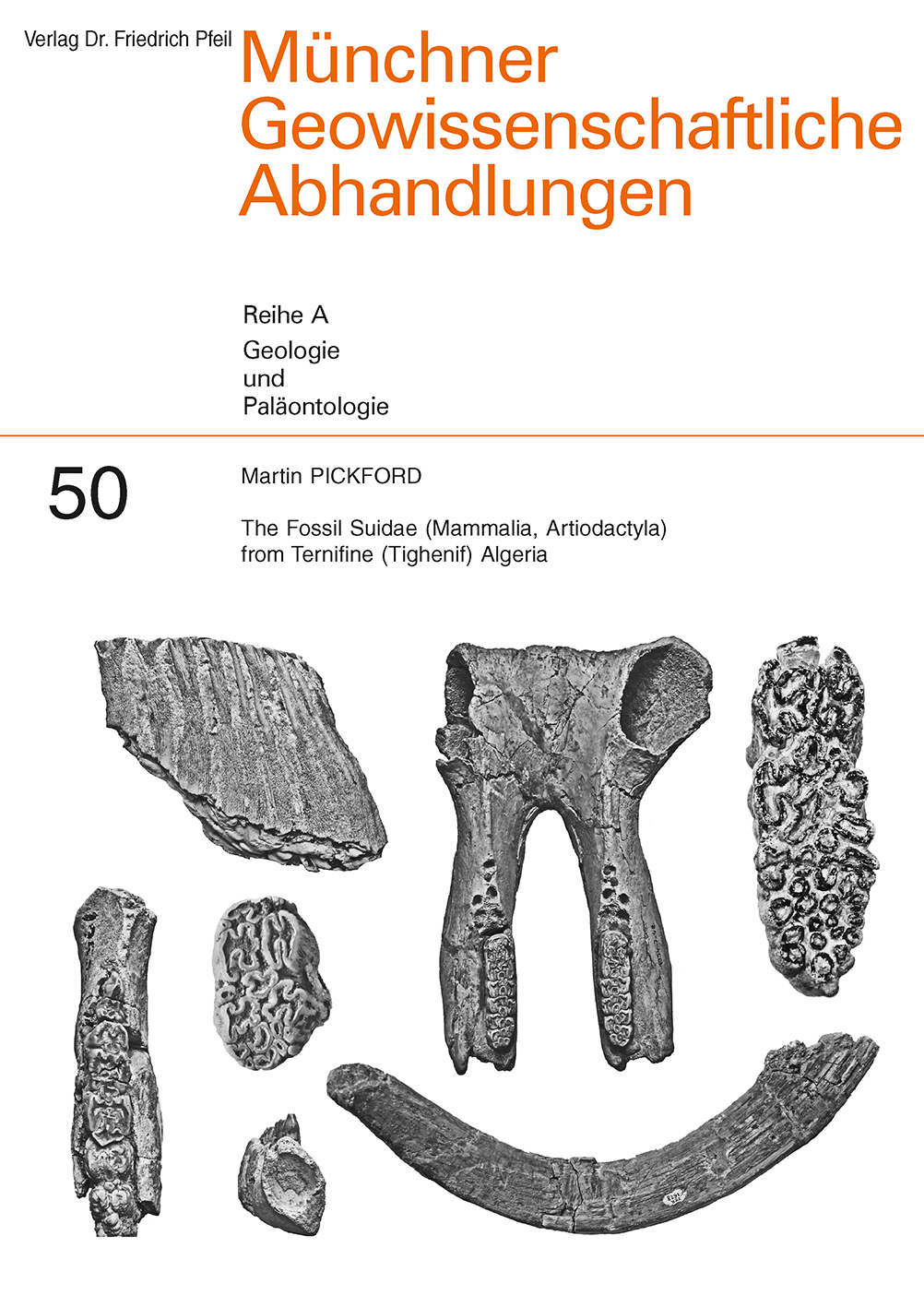 The Fossil Suidae (Mammalia, Artiodactyla) from Ternifine (Tighenif) Algeria