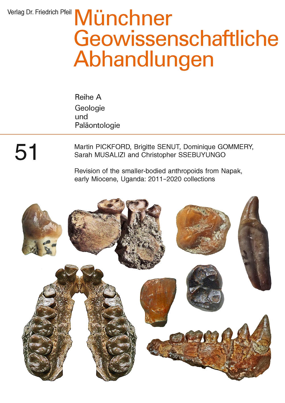 Revision of the smaller-bodied anthropoids from Napak, early Miocene, Uganda