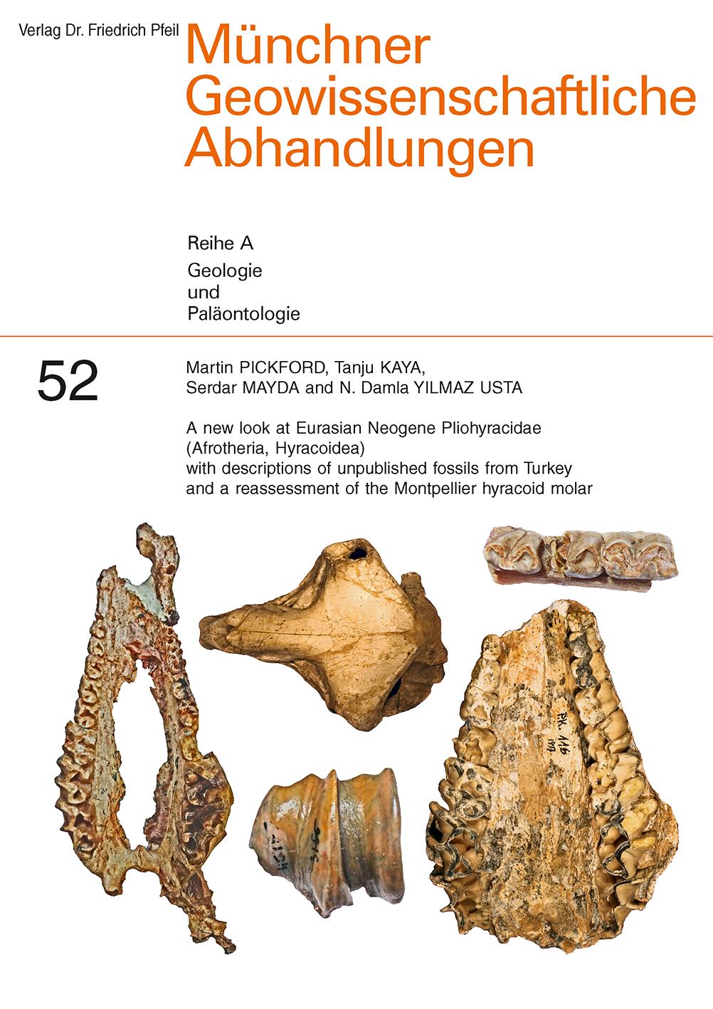 A new look at Eurasian Neogene Pliohyracidae